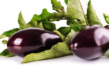 How to Grow Aubergines?