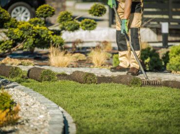 Top 5 Ways to Keep Your Garden Healthy
