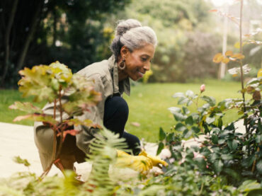 8 Tips for Helping Garden Plants Grow Well